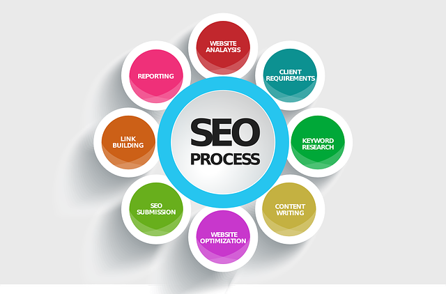 picture of seo process